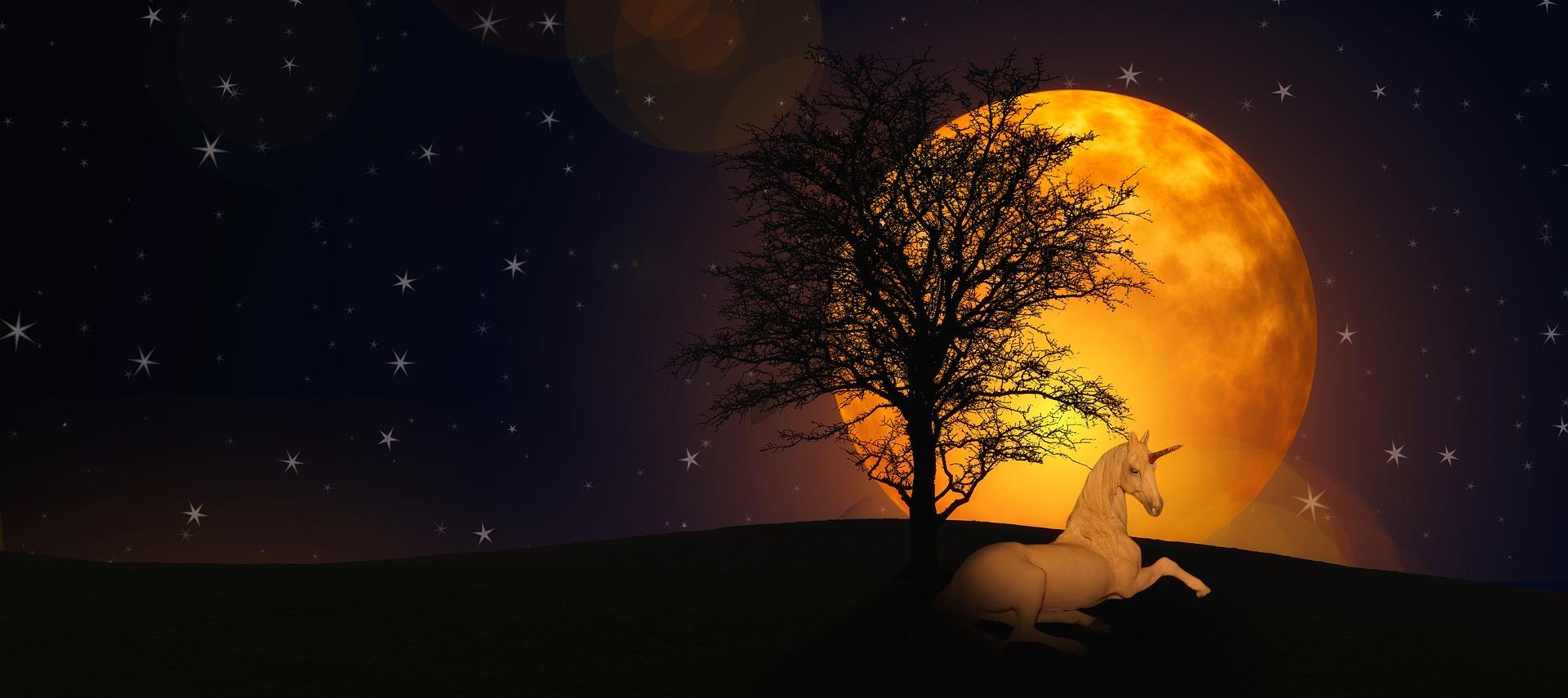 一角獣と夜と月